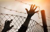Flykting vid stängsel