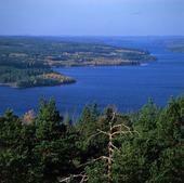 Landskapsvy i Dalsland
