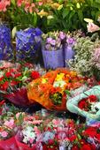 Europeiska blomsteraffär
