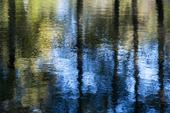 Vattenspegel med höstfärger