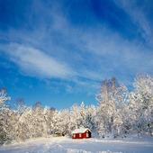 Röd stuga i vinterlandskap