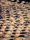 Solparasoller på strand