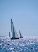 Segelbåtar  i motljus
