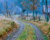 Mindre väg på landsbygd