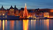 Julgran i Gamla stan, Stockholm