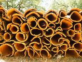 Bark från kork ek, Portugal