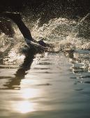 Dyk i vattnet