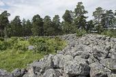 Borybyskans fornborg, Kolbäck, Västmanland