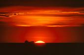 Fartyg i solnedgång