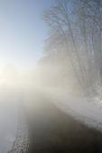 Vinterdis vid vattendrag