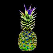 Idèbild  ananas   (solariserad)