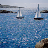 Segelbåtar på glittrigt hav