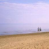 Promenad på sandstrand