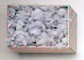 Låda med vita fjädrar
