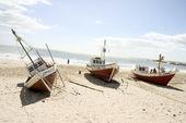 Fiskebåtar, Uruguay