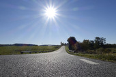 Landsväg i motljus