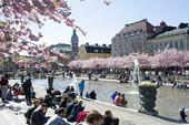 Kungsträdgården i Stockholm