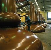 Whiskytillverkning, Skottland