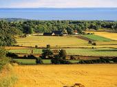 Jordbrukslandskap, Skåne
