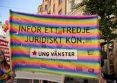Demonstration, Stockholm Pride festival