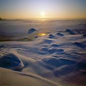 Vinter vid havskust