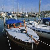 Fritidsbåtar i småbåtshamn