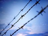 Taggtrådsstängsel