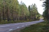 Landsväg i Gästrikland