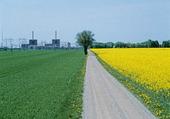 Kärnkraftverk vid rapsfält