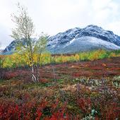 Stora Sjöfallets nationalpark, Lappland