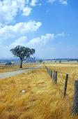 Landsväg, Australien