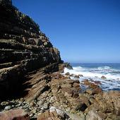 Kaphalvön, Sydafrika