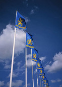 Göteborgsflaggor