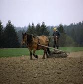 Vårbruk med häst