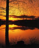 Solnedgång vis sjö