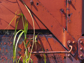 Old Rusted Railroad Wagons