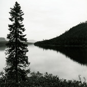 Vindelälven, Västerbotten