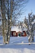 Röd stuga i vintermiljö