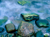 Rocks on the sea shore