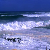 Waves at Waimea beach, Hawaii