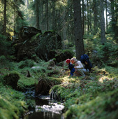 Mor med barn i skogen