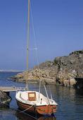 Förtöjd segelbåt i havsvik