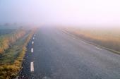 Dimma på väg