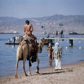 Turist på kamel, Jordanien