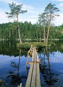 Gångbro till ö