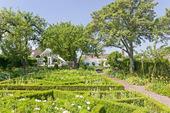 Sofiero trädgård