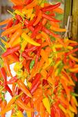 Chilifrukter på tork