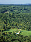 Bondgård i skogslandskap