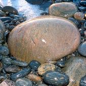 Sten  på stenstrand