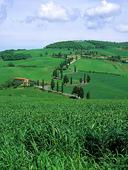 Toscana, Italien